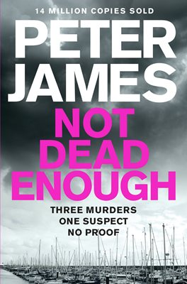 Book cover for Not Dead Enough